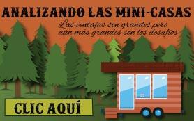 Infografía: Las Mini Casas