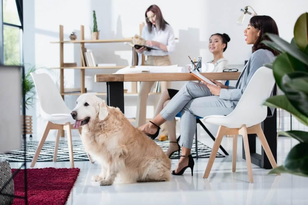 MIllennials y los beneficios en el trabajo