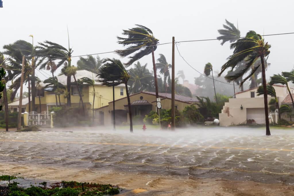 vientos y víctimas de huracanes