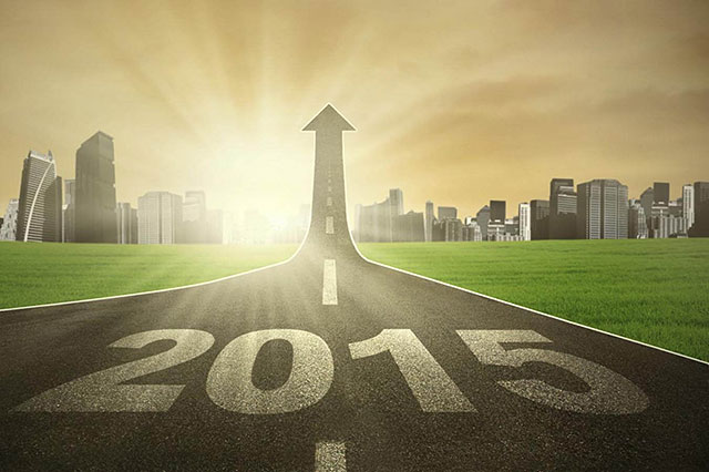 On the right financial path for 2015