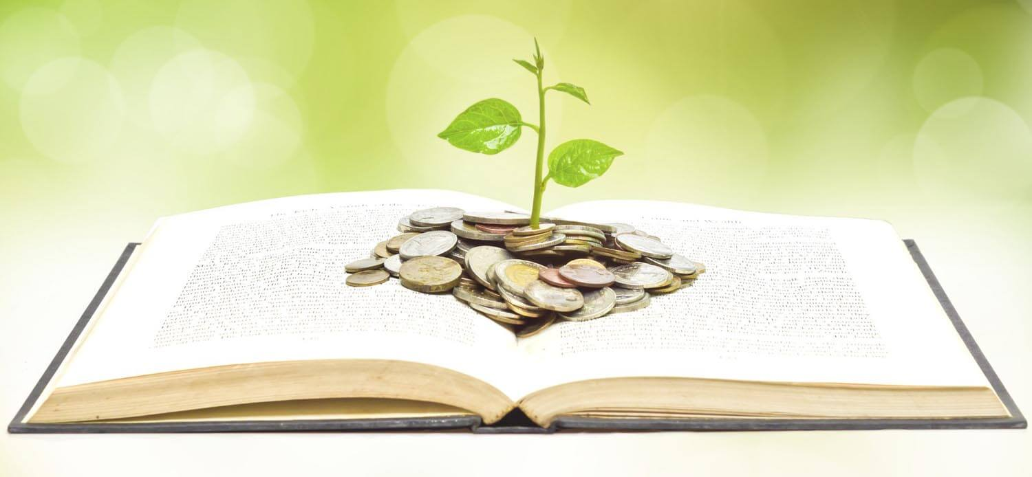 Build your financial knowledge