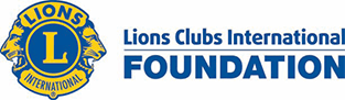 Lions in Sight Foundations