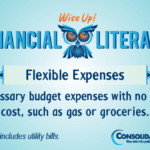 Financial Literacy - Wise Up! Flexible expenses: Necessary budget expenses with no fixed cost, such as gas or groceries