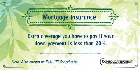 Mortgage insurance financial literacy tip