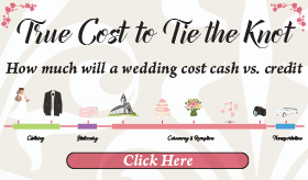 Goes to page displaying info graphic on the real wedding budget cost with interest added