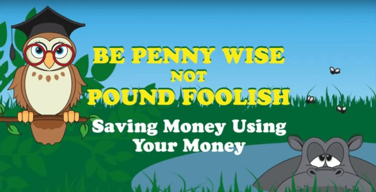 Be Penny Wise Not Pound Foolish: Save Money Using Your Money