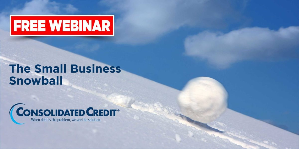 Free Webinar: The Small Business Snowball