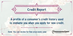 Credit report financial literacy tip